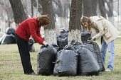 black bags of garbage