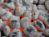 Briquetas de carbón