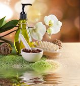 Spa and Dody Care