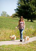 Tween Walking Puppies