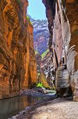 O Narrows