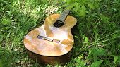 Acoustic Guitar On The Green Grass In The Forest. Guitar In A Park In A Forest Glade Outdoors On A S poster