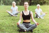 Calmness In Soul. Delighted Nice Calm Women Sitting On The Grass And Meditating While Looking For Ha poster