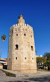 The gold tower, Seville