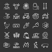 Agriculture Chalk Icons Set. Farming. Agricultural Implement. Isolated Vector Chalkboard Illustratio poster