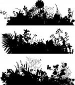 Flowers and grass vector silhouette.