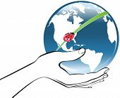 Earth in a hand with ladybird, ecology vector illustration
