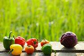 Organic Vegetables On Wood ,fresh Organic Vegetables.organic Vegetables And Fruits, Food Background. poster