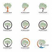 Family Tree Logo Vector Template poster