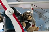 Teddy Bear Wearing Pilot Glasses And A Pilots Jacket On The Wing Of A Vintage Aircraft. Close Up. poster