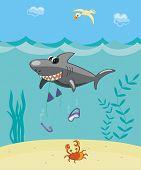 Shark Attack.eps