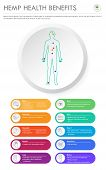Hemp Health Benefits Vertical Business Infographic Illustration About Cannabis As Herbal Alternative poster