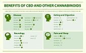 Benefits Of Cbd And Other Cannabinoids Horizontal Infographic Illustration About Cannabis As Herbal  poster