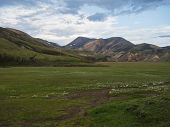 Green Meadow With Colorful Rhyolit Mountain Panorma With Multicolored Volcanos In Landmannalaugar Ar poster