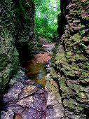 Narrow Gorge In Bourbonnais Illinois