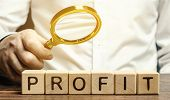 Businessman Holds A Magnifying Glass Over The Word Profit. The Concept Of Profitability And Performa poster