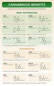 Cannabinoid Benefits Vertical Textbook Infographic Illustration About Cannabis As Herbal Alternative poster
