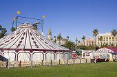 Carp Of Circus.