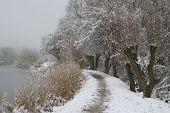 Snow Landscape Near River