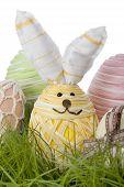 Adorable Easter Bunny Egg