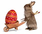 Funny Easter Bunny Rabbit With A Wheelbarrow And A Red Easter Egg