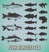 Fish Silhouette Labels