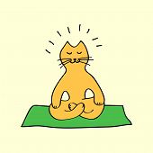 Cute orange cartoon cat in yoga position, vector