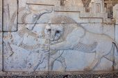 foto of xerxes  - Ruins of ancient Persepolis in Iran - JPG