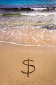 picture of sand dollar  - Dollar sign in the sand being washed away - JPG