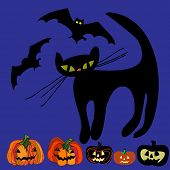 Halloween vector set: black cat, bat and Jack-o-lantern.