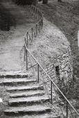 Stone Stairway In Fiesole