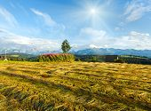 Summer Mountain Evening Country View With Mown Field