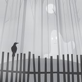 picture of raven  - Halloween background with ravens on fence and ghost - JPG
