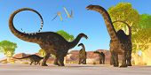 stock photo of apatosaurus  - Two Pterosaurs fly over a herd of Apatosaurus dinosaurs as they wonder through a prehistoric forest - JPG