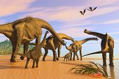 picture of behemoth  - A Brachiosaurus herd walks down a wet sandy beach in search of vegetation to eat - JPG