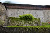 Wall Of Chateau De Chillon, Switzerland