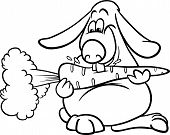 Lop Rabbit With Carrot Coloring Page