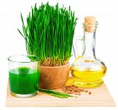 Wheatgrass Juice With Sprouted Wheat And Wheat Germ Oil On The Mat