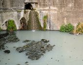 Polluted Drainage Canal