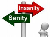 Insanity Sanity Signpost Shows Sane Or Insane