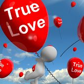 True Love Balloons Represents Couples And Lovers