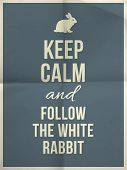 picture of white rabbit  - Keep calm and fallow the white rabbit quote on colour folded in four paper texture with frame - JPG