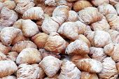 italian pastries, sfogliatelle, typical Neapolitan sweet food