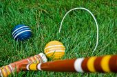 Croquet Competition