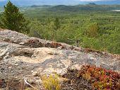 Rocky Taiga Terrain Near Whitehorse Yukon Canada