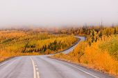 Winding Golden Fall Taiga Road Yukon Canada