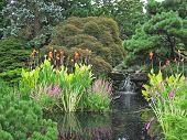 Garden Waterfall 2