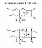 General Structural Chemical Formulas Of Mycotoxins (b-type)