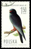 Vintage  Postage Stamp. Falcon  Vespertinus.