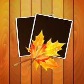 Framework For A Photo With Place For Your Image Decorated Autumn Maple Leaves